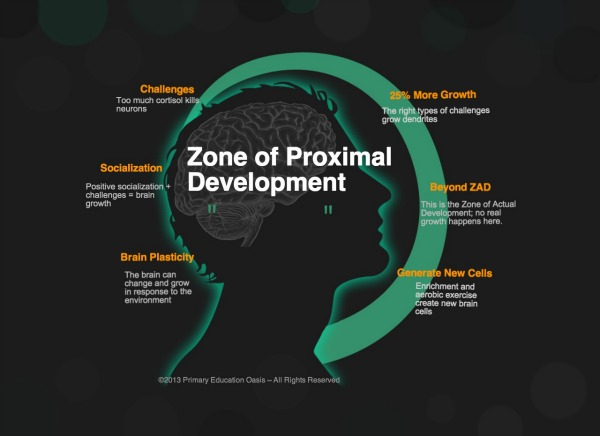 Brain-Research-and-Learning-infographic-4